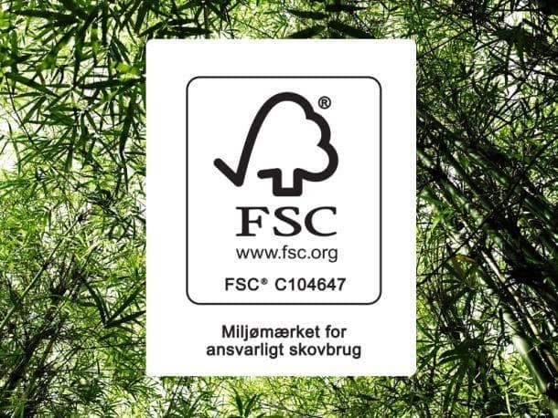 Kvik_FSC.jpg